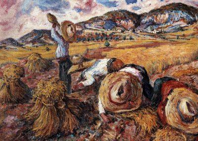 Recolección de la cosecha