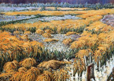 Siega del arroz en Sueca